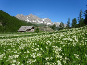 The Claree valley, Nevache