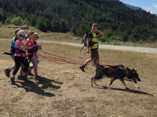 Dog-hike in Névache