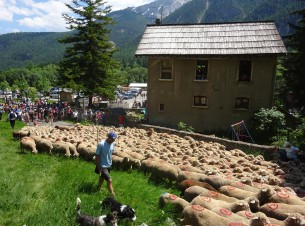 Party of the Transhumance in Névache